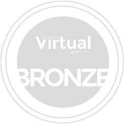 Servidor Virtual (VPS) Bronze