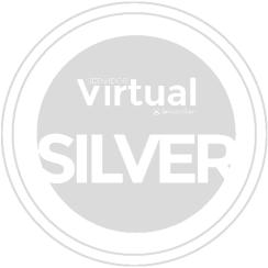Servidor Virtual (VPS) Silver